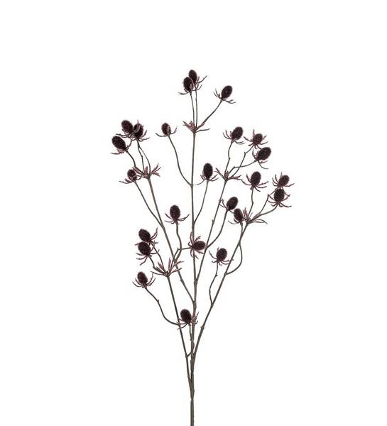 Tistel (brun 70 cm)